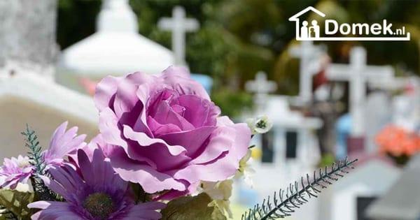 ¿Qué es el seguro funerario en los Países Bajos?
