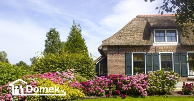 Rynek nieruchomości w Holandii latem – poznaj 5. faktów